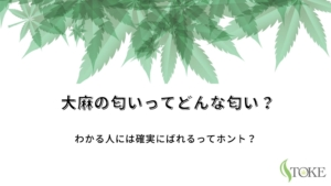 weed-smell-eyecatch