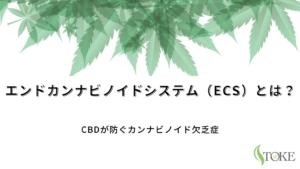 エンドカンナビノイドシステム(ECS)とは?CBDが防ぐカンナビノイド欠乏症